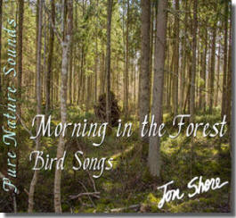 Pure Nature Sounds Morning in the Forest - Bird Songs by Jon Shore